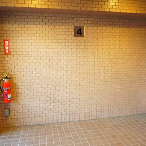 パシフィック小豆沢(4階,)のフロア廊下(エレベーター降りてからお部屋まで)