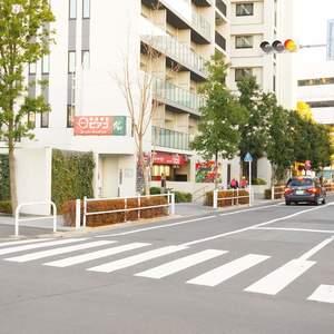 パシフィック小豆沢の周辺の食品スーパー、コンビニなどのお買い物