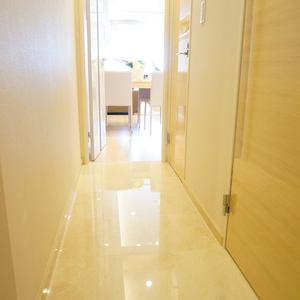 入谷アムフラット2(6階,4780万円)のお部屋の廊下