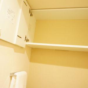 入谷アムフラット2(6階,4780万円)のトイレ