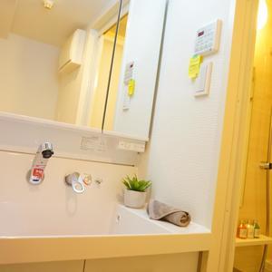 グランベル上野の杜(2階,)の化粧室・脱衣所・洗面室