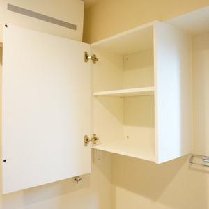 ライオンズシティ浅草(3階,3580万円)の化粧室・脱衣所・洗面室