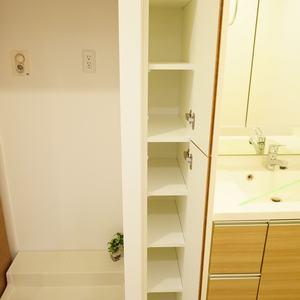 エグザ三ノ輪アヴェニール(4階,4299万円)の化粧室・脱衣所・洗面室