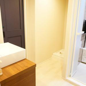 秀和富士見町レジデンス(4階,3780万円)の化粧室・脱衣所・洗面室