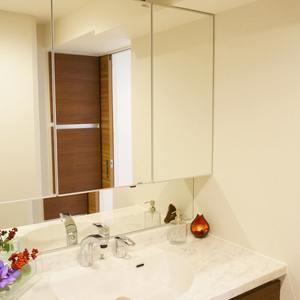 西戸山タワーホウムズノースタワー(24階,7280万円)の化粧室・脱衣所・洗面室
