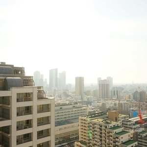 西戸山タワーホウムズノースタワー(24階,7280万円)のお部屋からの眺望