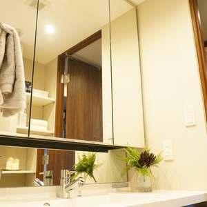 西戸山タワーホウムズノースタワー(15階,6790万円)の化粧室・脱衣所・洗面室