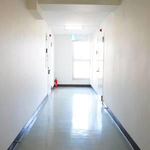 ウェスト早稲田マンション(4階,)のフロア廊下(エレベーター降りてからお部屋まで)
