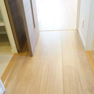 ウェスト早稲田マンション(4階,)のお部屋の廊下