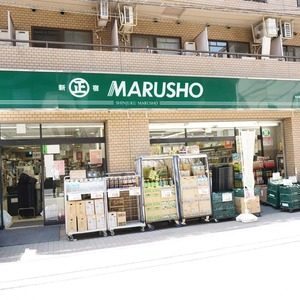 グリーンキャピタル神楽坂の周辺の食品スーパー、コンビニなどのお買い物