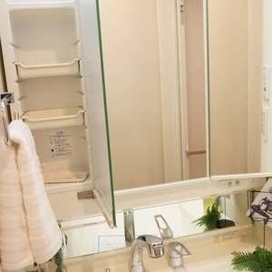 セブンスターマンション第2日本橋(8階,3580万円)の化粧室・脱衣所・洗面室