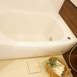 セブンスターマンション第2日本橋(8階,)の浴室・お風呂