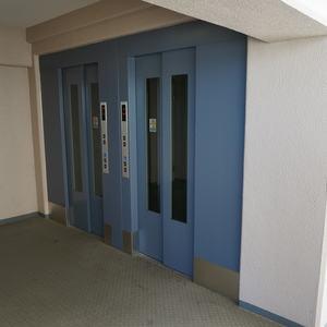 木場サニータウン1号棟のエレベーターホール、エレベーター内