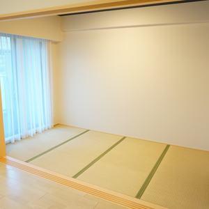 ザサウスキャナルレジデンス(3階,)の和室