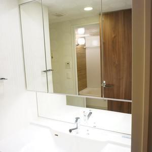 ザサウスキャナルレジデンス(3階,)の化粧室・脱衣所・洗面室