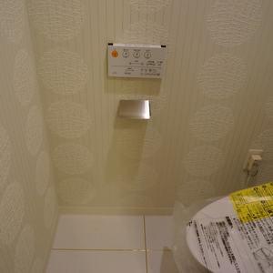 ザサウスキャナルレジデンス(3階,)のトイレ