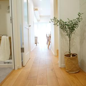 ストークマンション新宿(4階,5580万円)のお部屋の廊下
