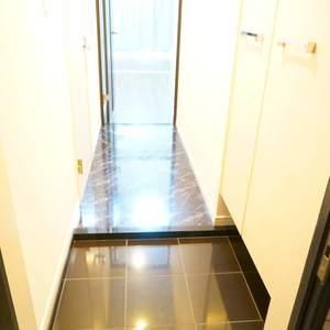 アクサスフォート両国立川(2階,)のお部屋の玄関