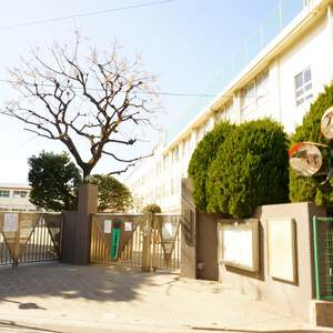 プラウド中野本町の保育園、幼稚園、学校