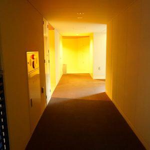 プラウド中野本町(1階,7680万円)のフロア廊下(エレベーター降りてからお部屋まで)