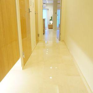 神楽坂ハウス(4階,)のお部屋の廊下