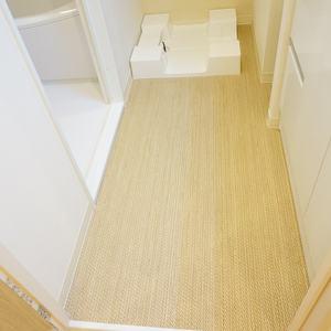 神楽坂ハウス(4階,)の化粧室・脱衣所・洗面室