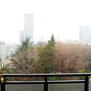 ライオンズシティ九段(9階,1億1980万円)のお部屋からの眺望