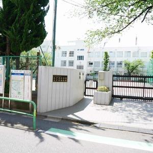 新神楽坂ハウスの保育園、幼稚園、学校