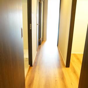 シャトレ市ヶ谷(13階,)のお部屋の廊下