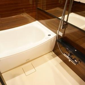 シャトレ市ヶ谷(13階,)の浴室・お風呂