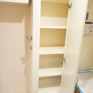ファミール東銀座グランスイートタワー(2階,)の化粧室・脱衣所・洗面室