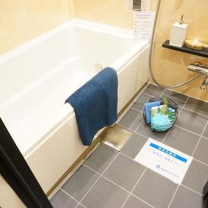 ファミール東銀座グランスイートタワー(2階,)の浴室・お風呂