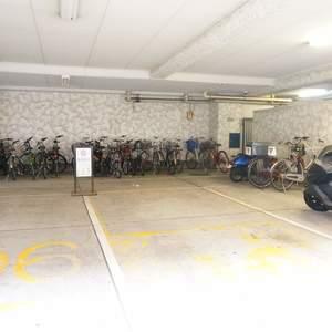 秀和第2築地レジデンスの駐輪場