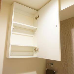 秀和第2築地レジデンス(9階,)のトイレ