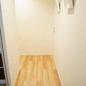 リバーシティ日本橋(6階,5498万円)のお部屋の廊下