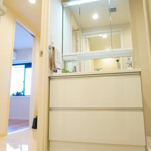 ライオンズヴィアーレ幡ヶ谷(4階,4880万円)の化粧室・脱衣所・洗面室
