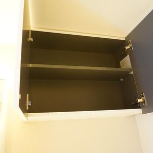 ライオンズガーデン幡ヶ谷(4階,)の化粧室・脱衣所・洗面室