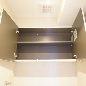 ライオンズガーデン幡ヶ谷(4階,)のトイレ