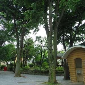 コーポ中野の近くの公園・緑地