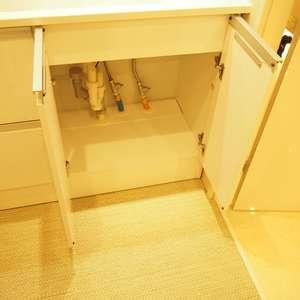 サンビューハイツ渋谷(2階,6280万円)の化粧室・脱衣所・洗面室