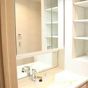 ブランズ文京本駒込(13階,)の化粧室・脱衣所・洗面室