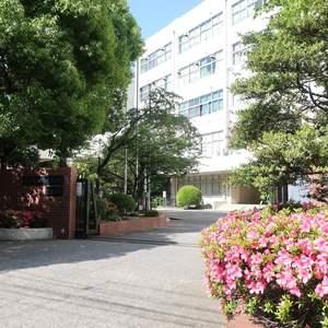 ライオンズマンション錦糸町第5の保育園、幼稚園、学校