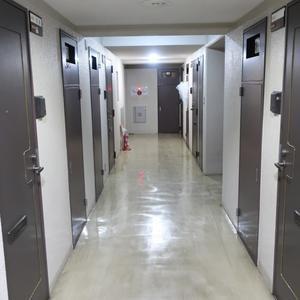 ライオンズマンション錦糸町第5(4階,)のフロア廊下(エレベーター降りてからお部屋まで)