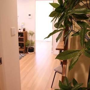 ライオンズマンション駒込第2(3階,)のお部屋の廊下