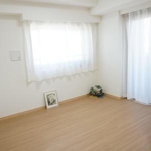 ラシュレ池袋椎名町(9階,)の洋室
