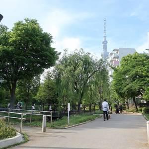 コスモ錦糸町グランシティの近くの公園・緑地
