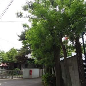 中野パークハウスの近くの公園・緑地