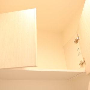 ウェルシャン白山(1階,)の化粧室・脱衣所・洗面室