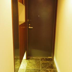 スターロワイヤル中野(1階,6580万円)のお部屋の玄関