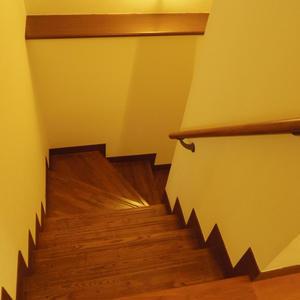 スターロワイヤル中野(1階,6580万円)のお部屋の廊下